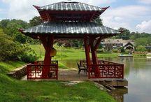 Japanese Style Pagoda