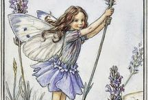 8 Fairy