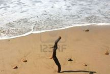 beach & travel