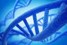 autism: brain&genetics / by ScottCarla Pitts