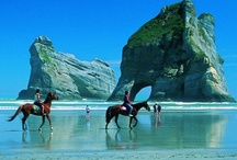 New Zealand / Inspiration, to make me save up hard so I can go and see it for my self