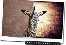 Fotomontagen und Bildbearbeitungen / Fotomontagen und Bildbearbeitungen by DiBaDi.de