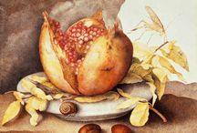 retrofrucht malen
