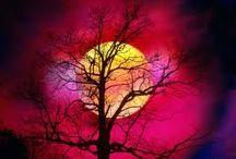 Samhain / Fiammella che ardi luminosa sii un faro in questa notte tenebrosa