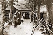 History lijnbaan
