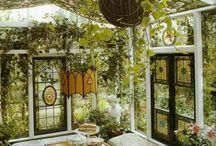 trädgårdsmums
