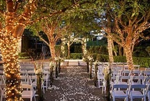 Wedding ❤️ / by Christina Smith