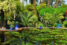 Marokko trip