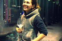 Cantine / Perbacco! Come si fa il vino?  dove si fa il vino?  #scopriamolo insieme  ovviamente parto dal #prosecco l'oro del mio territorio