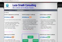 Luca Orselli Consulting / Contributi e articoli pubblicati sul sito lucaorselliconsulting.eu