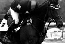 paardensport westrijden dressuur  en  springen
