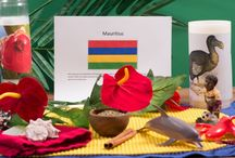Experience Mauritius