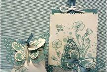 Butterfly basics / by Dee Tollaksen