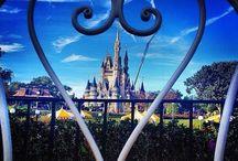 Disney World Trip '16