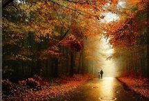 Φθινοπωρινη Βροχη.