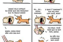 Como Cães e Gatos ❤