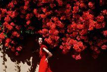 [MODE] Mario Testino / Photographe de mode péruvien (né en 1954). Il fait les unes de Vogue Paris, V Magazine, Vanity Fair ou GQ et travail régulièrement pour des marques comme  Gucci, Burberry, Versace ou Chanel. A ses dédbut il s'inspire beaucoup de Cecil Beaton. | http://www.mariotestino.com/