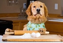 Silly Photos / Silly photos about baking or cooking!  Enjoy a good laugh on me! Always there to help....GFM
