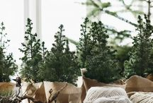 plants packing