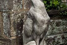 SIGHTHOUND SIGHTINGS / Anything Greyhound / by Karen P