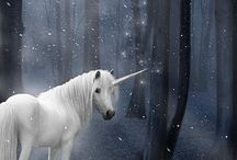 *Unicorns*,,,,,,,,,,,,,,,,,,,,,,,,,,,,,,,, / by Susan Clapsaddle