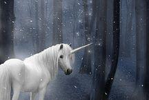 Tavle 16 unicorns
