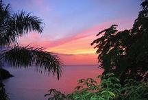 sunset sanctuary  / by Molton Benavente