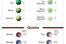 quarks & quiddities