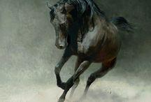 Horse paiting