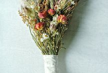 Dried Flowers / by Elinor Rose Stationery Design