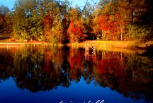 Fall 2015 / Autumn Pics from our annual Fall Express Tour of Kairos Photography - we have a blast #enjoytheshow!