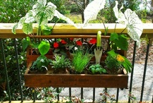 Gardening Using Your Deck and Fence in Seconds!