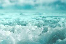 Sea-riously