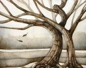 Tree / by Eva Miller of KapKaDesign