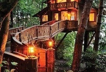 OK I want to live in a treehouse!