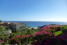 Cabo San Lucas, 2014 / Trip to Cabo San Lucas January 3-January 17, 2014