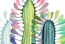 ILLUSTRATIONS INTERNET / Beatiful illustrations