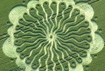 Crop Circles / Who did it?  / by Carolyn Parsons