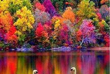 Herbst Landschaften