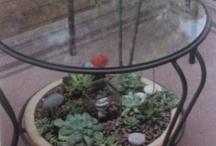 giardini miniatura / hobby