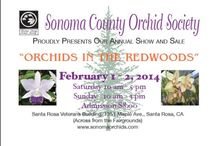 Sonoma County Orchid Show / Orchids In The Redwoods Saturday, February 1, 2014 10am - 5pm Sunday, February 2, 2014 10am - 3pm General Admission: $8.00