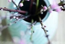 Bloemen & planten | flowers and plants gespot door Wonenonline.nl / De mooiste bloemen & planten afbeeldingen geselecteerd door onze redactie