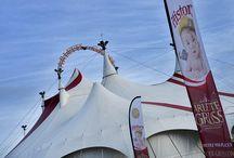 #ArletteGruss / #ArletteGruss  n'hésitez pas à venir au cirque ! Faites le vide dans votre tête pendant trois heures. Entrez dans le chapiteau, respirez l'air du cirque, regardez la piste encore vide. Etonnez-vous devant les exploits des artistes ! Alors si en entrant vous étiez quelqu'un de sympathique, en sortant du cirque vous serez devenus une personne formidable !  Docteur Michel Mochez
