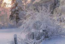 Vinter/Winter