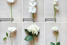 ♡ wedding flowers