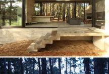 cube w lesie