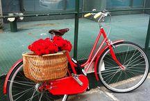 What A Rack! / Bicycle racks