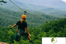 Ziplines / Soar through the Smokies for a view of the mountains unlike anything you've seen before.