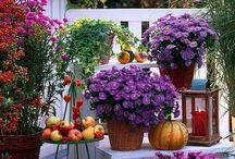 Autumn balkon