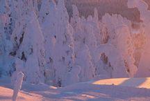 Talvi/ Winter